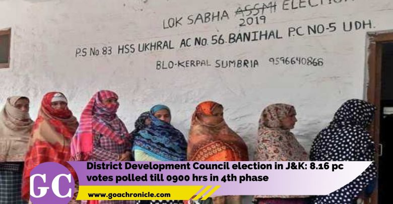 District Development Council election in J&K: 8.16 pc votes polled till 0900 hrs in 4th phase